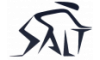 Salt Carbon logo